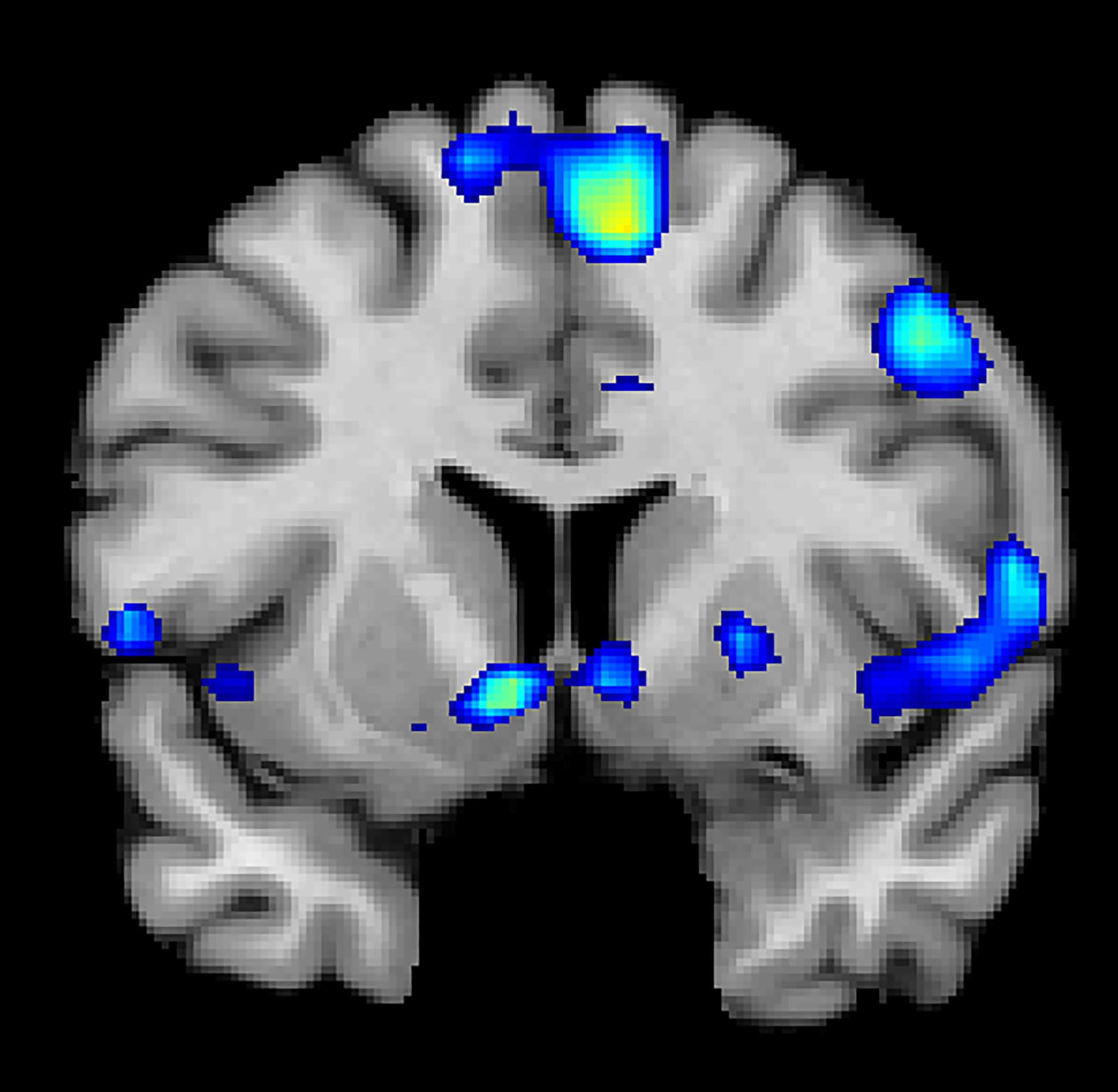 Cervello-e-spiritualità