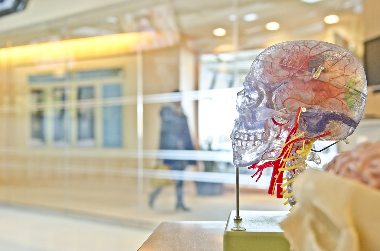 Top 100 Articoli Neuroscienze