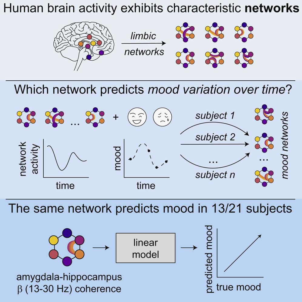Sbalzi d'umore e schemi neuronali
